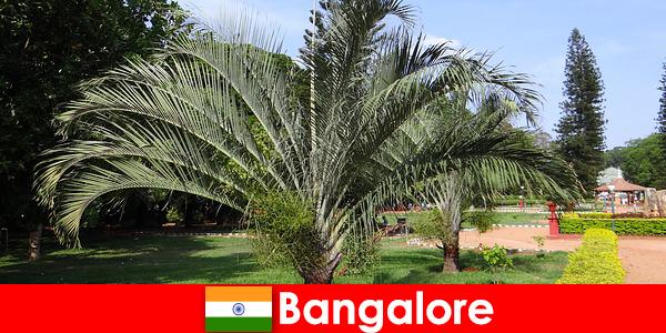 Przyjemny klimat Bangalore przez cały rok jest wart podróży dla każdego obcokrajowca