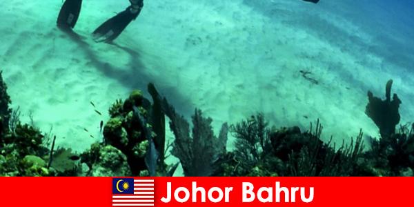 Zajęcia przygodowe w Johor Bahru Nurkowanie, wspinaczka, wędrówki i wiele więcej