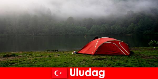 Wakacje na kempingu z rodziną w lasach Uludag Turcja