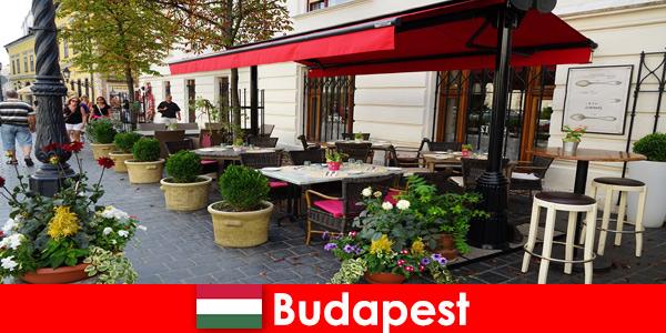 Krótkie miejsce na wakacje w Budapeszcie na Węgrzech dla gości z zamiłowaniem do ekskluzywnej gastronomii