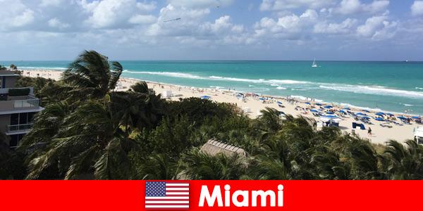 Palmy piaszczyste fale czekają na długoterminowych wczasowiczów w rajskim Miami w Stanach Zjednoczonych